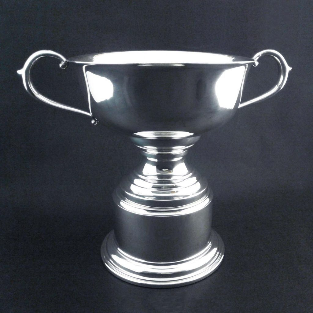 Custom Loving Cup Trophy (TR650 Series)